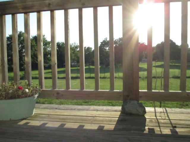 sun flare, porch, flower pot, sunset