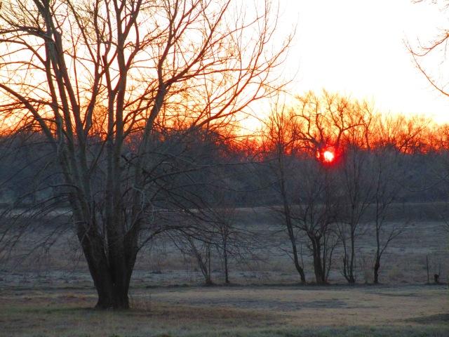 early morning sun,autumn sun,the sun rising,